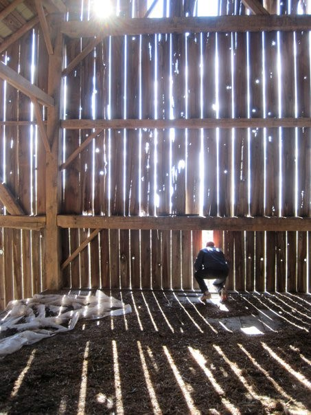 Photo of sunlight coming into a barn through gaps in the walls.